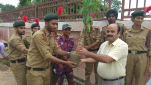 Tree Plantation Programme by NCC Cadets @ HCST @ DeenDayal Dham
